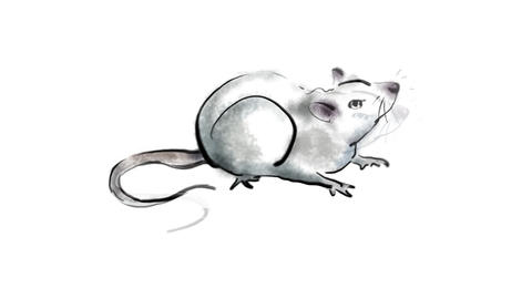 Zodiac Rat Animation