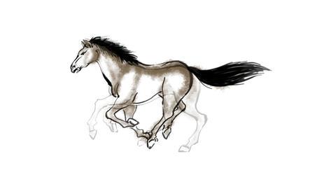 Zodiac Horse Stock Video Footage