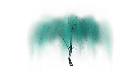 Chinese Calligraphic Liu Tree Stock Video Footage