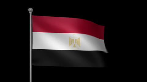Egypt Flag Stock Video Footage