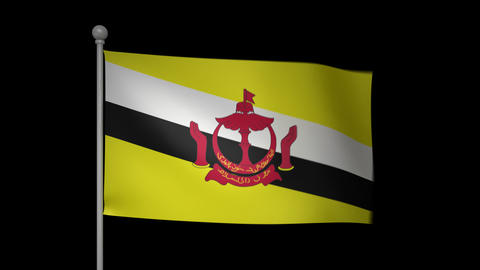 Brunei Flag Stock Video Footage