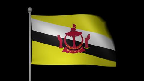 Brunei Flag Stock Video Footage