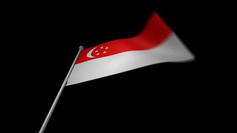 Singapore Flag Stock Video Footage