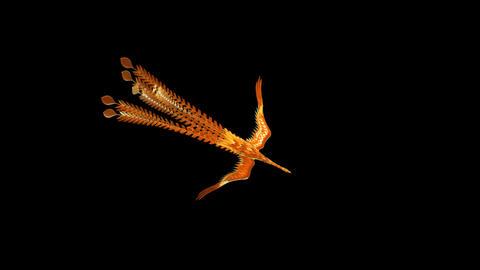 Phoenix Animation
