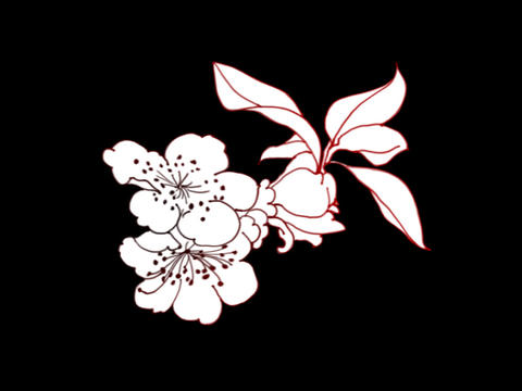 Floral Elements 2