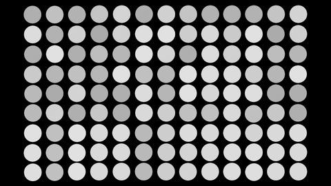 Dots Wipe Stock Video Footage