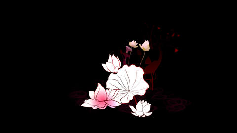 Lotus Animation