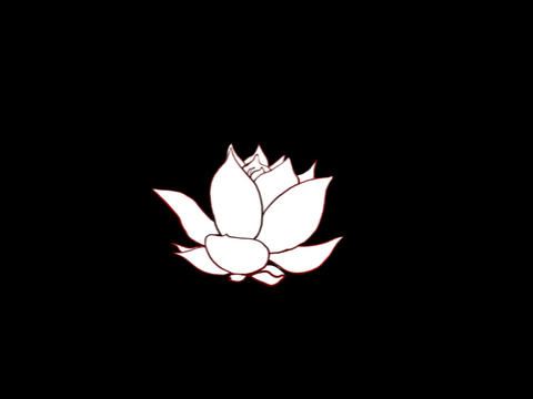 Lotus Opens Animation