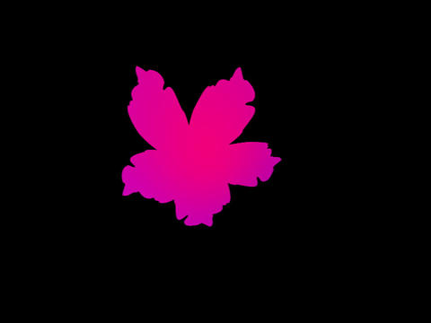 Petal Pink Stock Video Footage