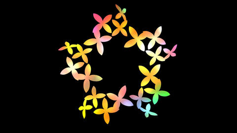 Flower Spin Color Stock Video Footage