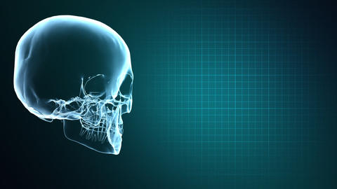 X-Ray Skull and Heart Monitor Animation