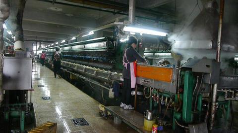 Workers reeling at workshop.Silkworm cocoon at silk factory Footage