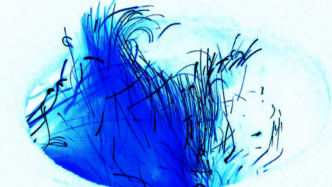 Beautiful brilliant flame,fly line.Ink-droplets,ink,paint,water-color,splash,liq Animation