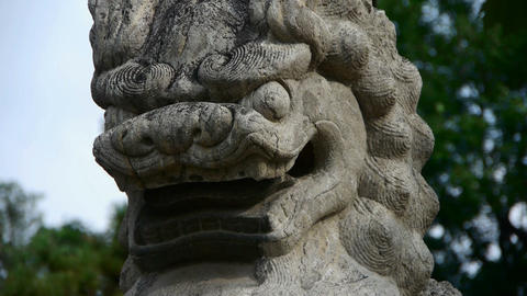 Temple stone lion,Historical monuments Footage
