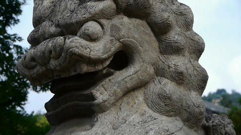 Stone lion,historical monuments,shaking tree shadows Stock Video Footage