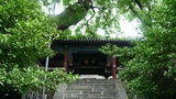 Chinese ancient building under the green trees Footage