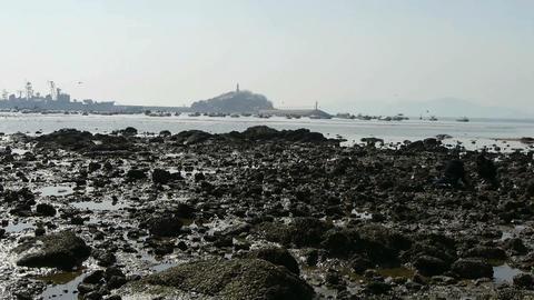 Tsingtao trestle.Island of QingDao city.Warship moored in... Stock Video Footage