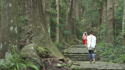 World heritage Daimon hill Stock Video Footage