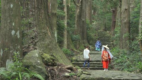 World heritage Daimon hill Footage