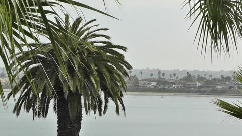 San Diego California 04 Stock Video Footage