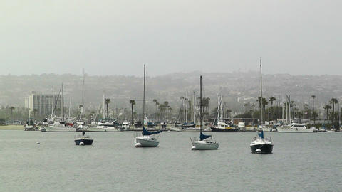 San Diego Mission Bay 03 Stock Video Footage