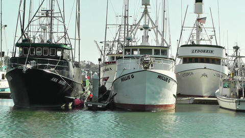 San Diego Port 02 Stock Video Footage