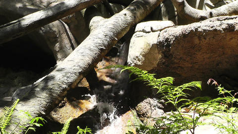 Tropical Waterfall 02 60fps native slowmotion Stock Video Footage