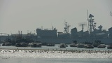 Warship moored in port,seagull habitat on sea,Yachts & Vessels docked at pie Footage