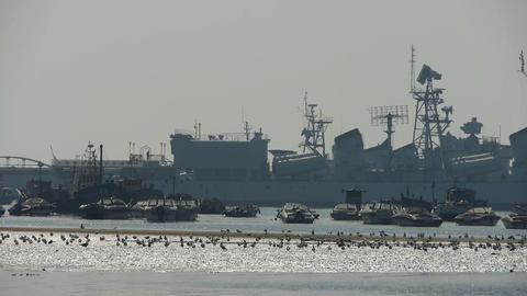 Warship moored in port,seagull habitat on sea,Yachts... Stock Video Footage