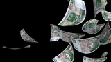 Falling Polish Zlotys (Loop + Matte) stock footage
