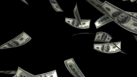 Falling Dollars (Loop + Matte) Stock Video Footage
