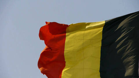 Belgian flag is fluttering in wind Stock Video Footage