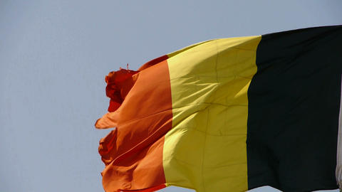 Belgian flag is fluttering in wind Stock Video Footage