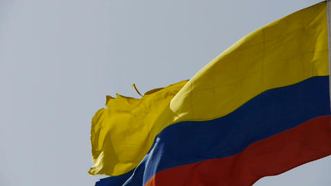 Columbian flag is fluttering in wind Stock Video Footage