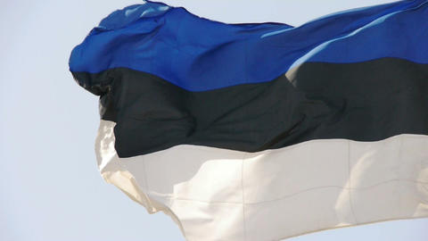 Estonia flag is fluttering in wind Stock Video Footage
