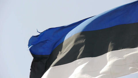 Estonia flag is fluttering in wind Stock Video Footage