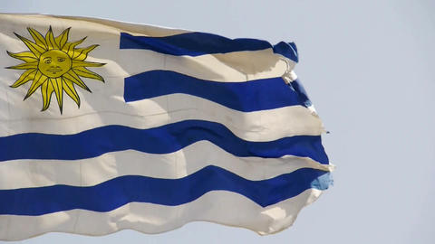 Uruguay flag is fluttering in wind Stock Video Footage