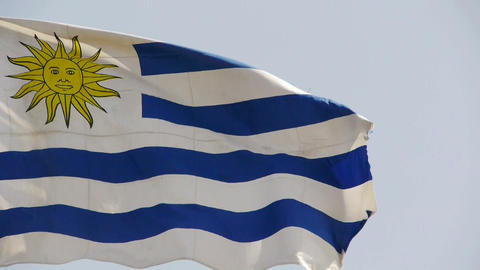 Uruguay flag is fluttering in wind Stock Video Footage