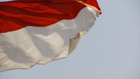Indonesia flag is fluttering in wind Stock Video Footage