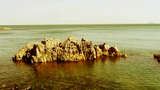 Ocean water surface and rock reef coastal,algae,seaweed,ebb,gravel,island Footage