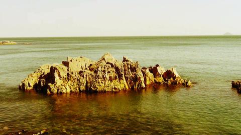 Ocean water surface and rock reef coastal,algae,seaweed,ebb,gravel,island Footage
