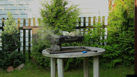 Barbecue in the garden - Smoke rising from the grill Footage