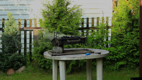 Barbecue in the garden - Smoke rising from the grill 2 Footage