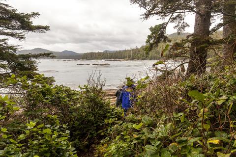 Hiking West Coast Trail Foto