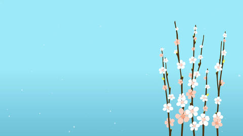 Easter Blossom Sakura With Flowers On Blue Background Card or Commercial Templat Animation