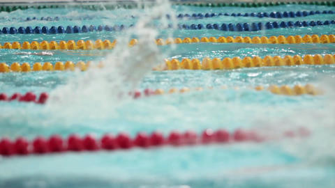 Competition in sports swimming Footage