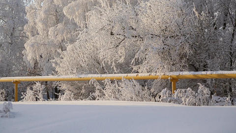 A gas pipe in a snowy forest Footage