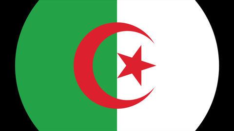Flat Flag 2