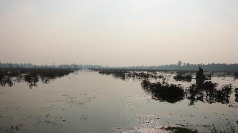 Cambodia swamp flooded land Angkor Wat Footage
