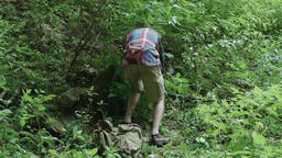 Man looking closely at an object discovered in the dense vegetation of green for Footage